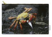Sally Lightfoot Crab Feeing Galapagos Carry-all Pouch