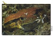 Sambava Tomato Frog Carry-all Pouch