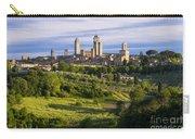 San Gimignano Carry-all Pouch