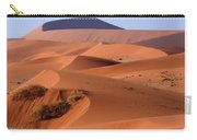 Sand Dune Sculpture  Carry-all Pouch