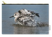 Sanderling Pictures 29 Carry-all Pouch