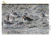 Sanderlings And A Ruddy Carry-all Pouch