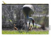 Sandhill Chicks Under Foot Carry-all Pouch