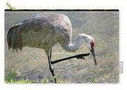 Sandhill Crane Balancing On One Leg Carry-all Pouch by Sabrina L Ryan