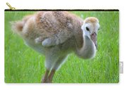 Sandhill Crane Chick I Carry-all Pouch
