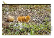 Sandhill Crane Chick Carry-all Pouch