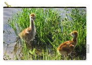 Sandhill Crane Chicks  Carry-all Pouch