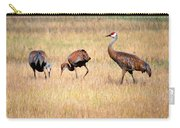 Sandhill Crane Family I Carry-all Pouch