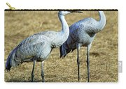 Sandhill Crane Pair Carry-all Pouch