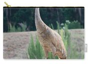 Sandhill Standing Tall Carry-all Pouch