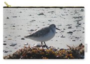 Sandpiper And Seaweed Carry-all Pouch