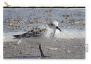 Sandpiper And Shells Carry-all Pouch