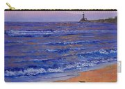 Sandpiper At Sunset Carry-all Pouch