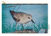 Sandpiper Carry-all Pouch