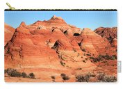 Sandstone Amphitheater Carry-all Pouch