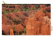 Sandstone Hoodoos At Sunrise Bryce Canyon National Park Utah Carry-all Pouch
