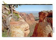 Sandstone Smile Carry-all Pouch