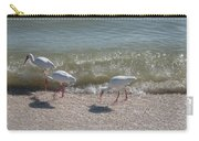Sanibel Ibis Carry-all Pouch