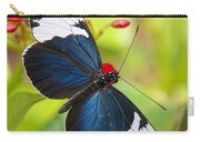 Sapho Longwing  Carry-all Pouch