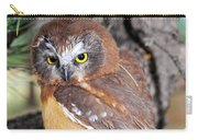 Saw-whet Owl In Conifers Carry-all Pouch