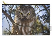 Saw Whet Owl Carry-all Pouch