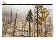 Sawback Burn, On Bow Valley Parkway Carry-all Pouch