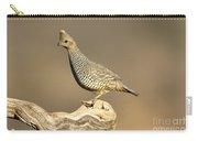 Scaled Quail Callipepla Squamata Carry-all Pouch