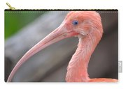 Scarlet Ibis 1 Carry-all Pouch