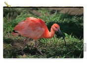 Scarlet Ibis Hybrid Carry-all Pouch