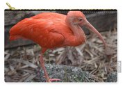 Scarlet Ibis One Legged Pose Carry-all Pouch
