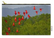 Scarlet Ibis Carry-all Pouch by Tony Beck