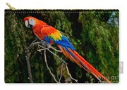 Scarlet Macaw Perched Carry-all Pouch