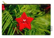 Scarlet Morning Glory - Horizontal Carry-all Pouch