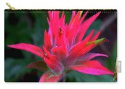 Scarlet Paintbrush On Swiftcurrent Pass Trail In Glacier National Park-montana Carry-all Pouch