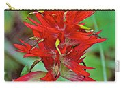 Scarlet Paintbrush On Trail To Swan Lake In Grand Teton National Park-wyoming- Carry-all Pouch