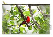 Scarlet Tanager - 11 Carry-all Pouch