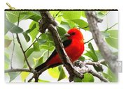 Scarlet Tanager - 19 Carry-all Pouch