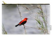 Scarlet Tanager - Coastal - Migration Carry-all Pouch