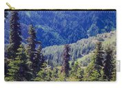 Scenic Mountain Valley Carry-all Pouch