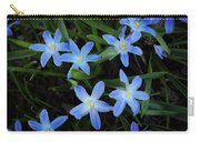 Scilla Flowers In The Morning Carry-all Pouch