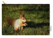 Sciurus Vulgaris In Evening Light Carry-all Pouch