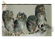 Screech Owl Chicks Carry-all Pouch