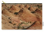 Sculpted Colorado Sandstone Paria Canyon Carry-all Pouch