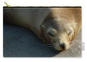 Sea Lion-00178 Carry-all Pouch