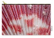 Sea Shells Upclose 1 Carry-all Pouch