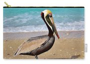 Sea Sick Sam Carry-all Pouch