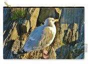 Seagull In Shadow Carry-all Pouch