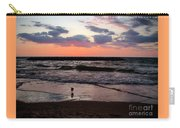 Seagull With Sunset Carry-all Pouch