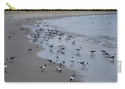 Seagulls On The Delaware Bay Carry-all Pouch by Bill Cannon