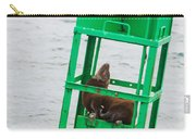Seal Hammock Carry-all Pouch